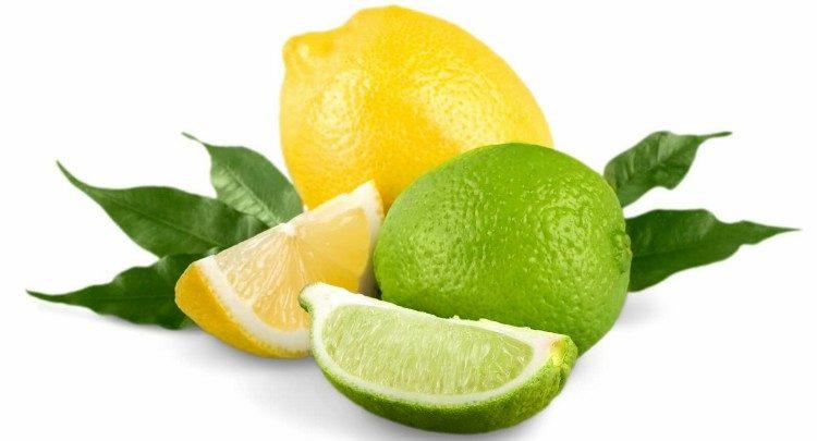 como cultivar limão