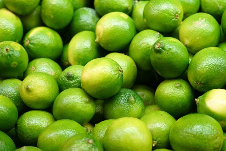 como plantar limão em vaso