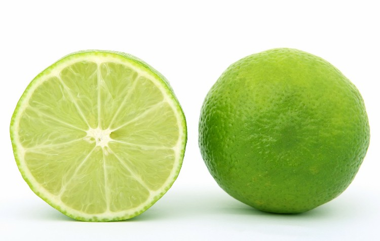 como plantar limão passo a passo