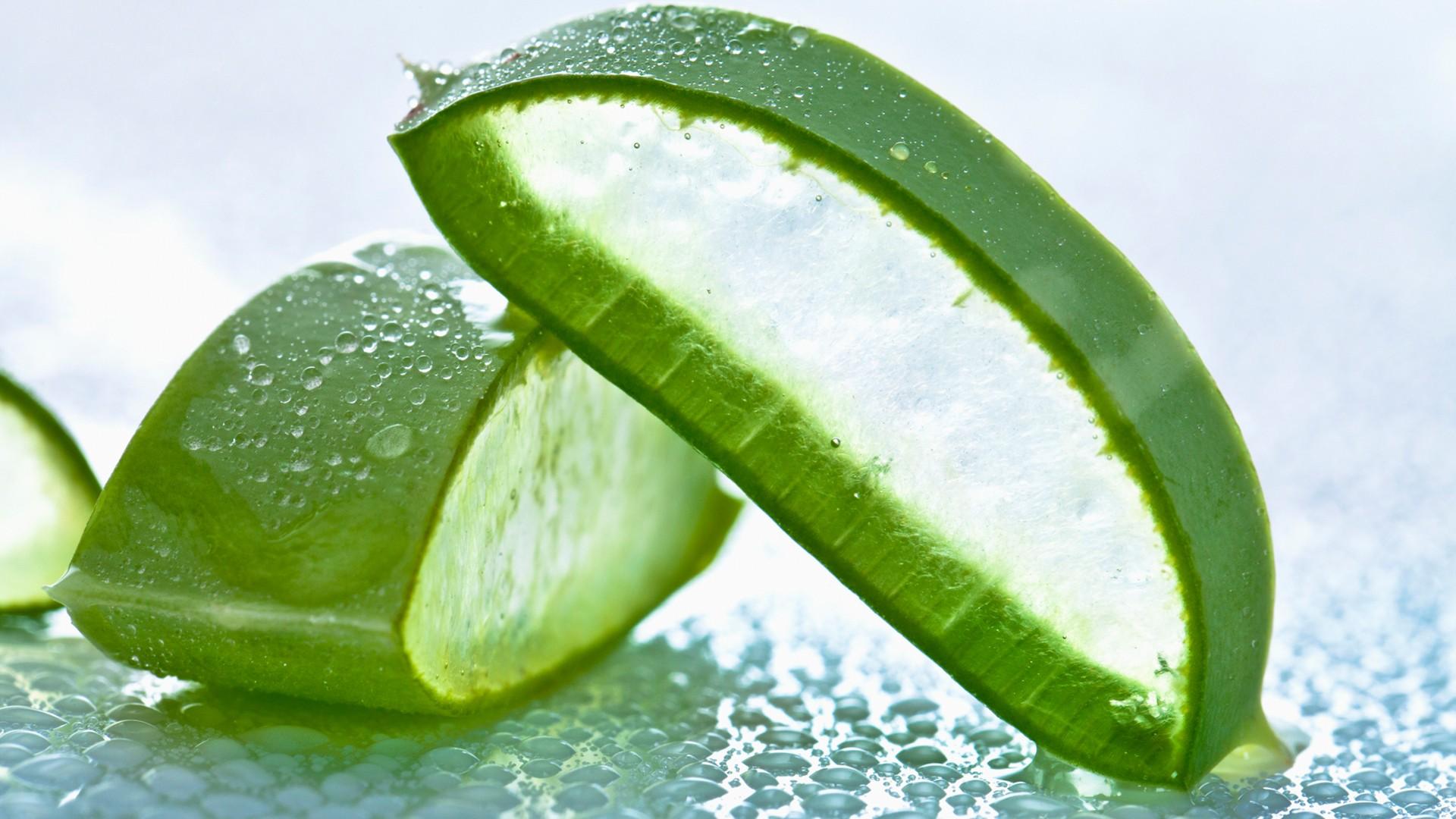 Benefícios da Aloe Vera