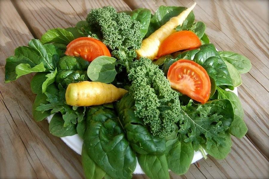Melhores Vegetais Para ser Cultivados em Horta