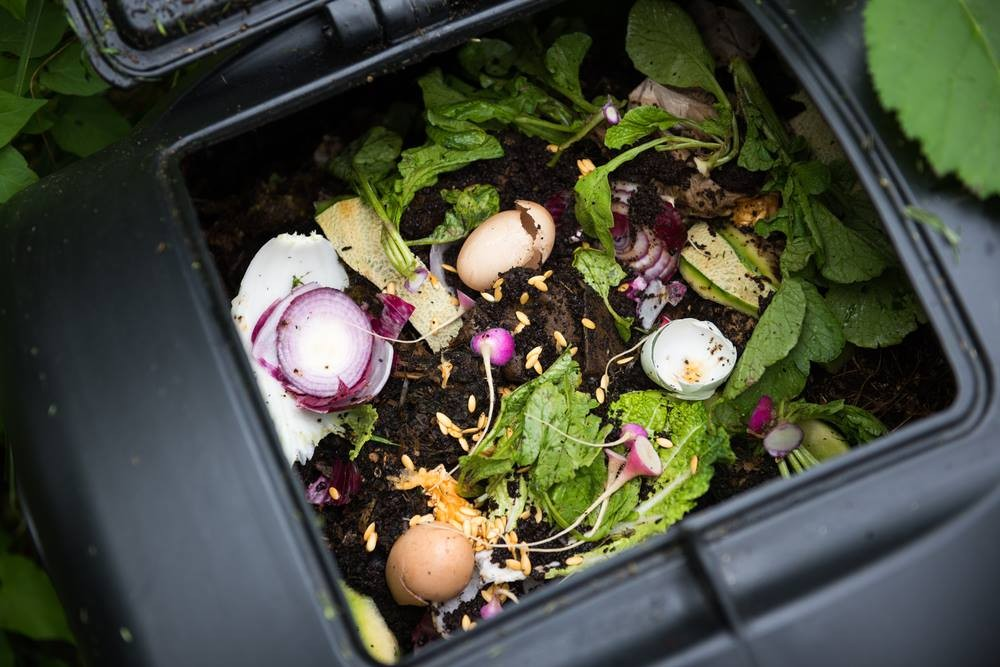 Como Fazer Adubo Orgânico_ Resto de Alimentos