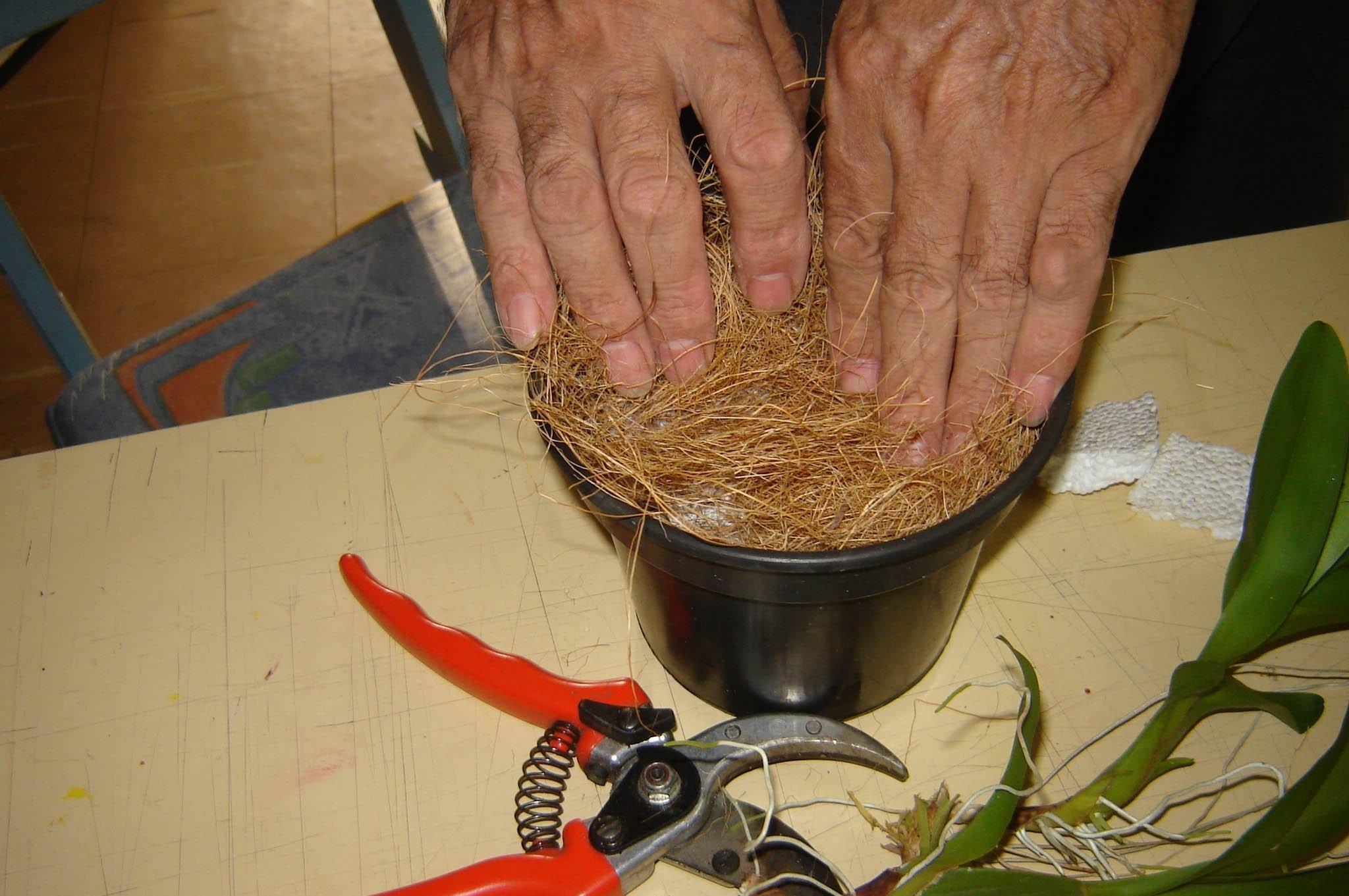 Como Fazer o Substrato Ideal