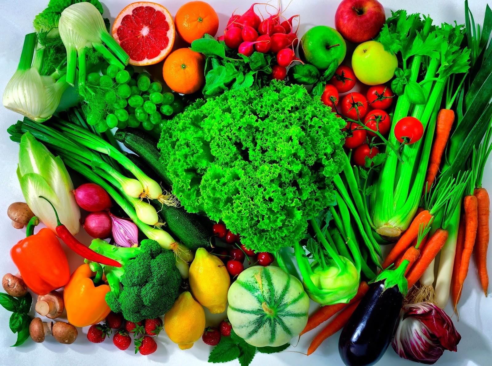 Como Cultivar Hortaliças em Casa Durante o Ano Todo