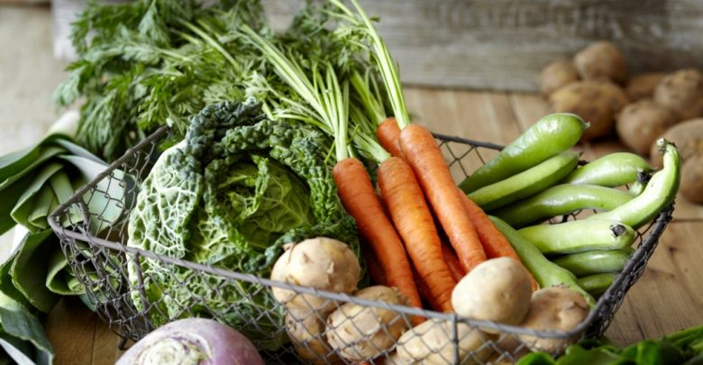 vegetais para ser cultivados em horta