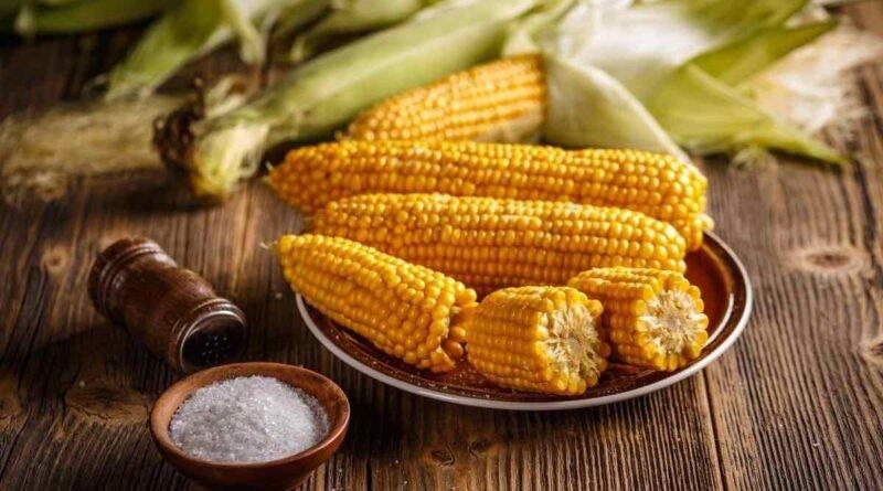 beneficio do milho