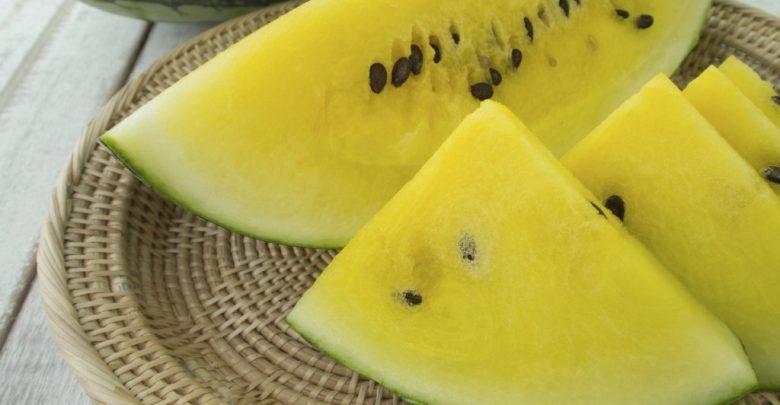 melancia amarela como plantar